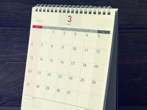 Calendar for Audit